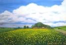 Bauernhof im Mai